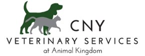 CNY Veterinary Services at Animal Kingdom